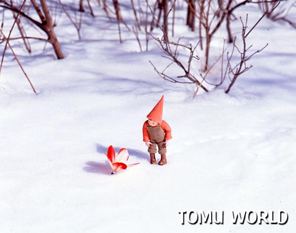 雪原にポツンと残された羽根を眺める小人