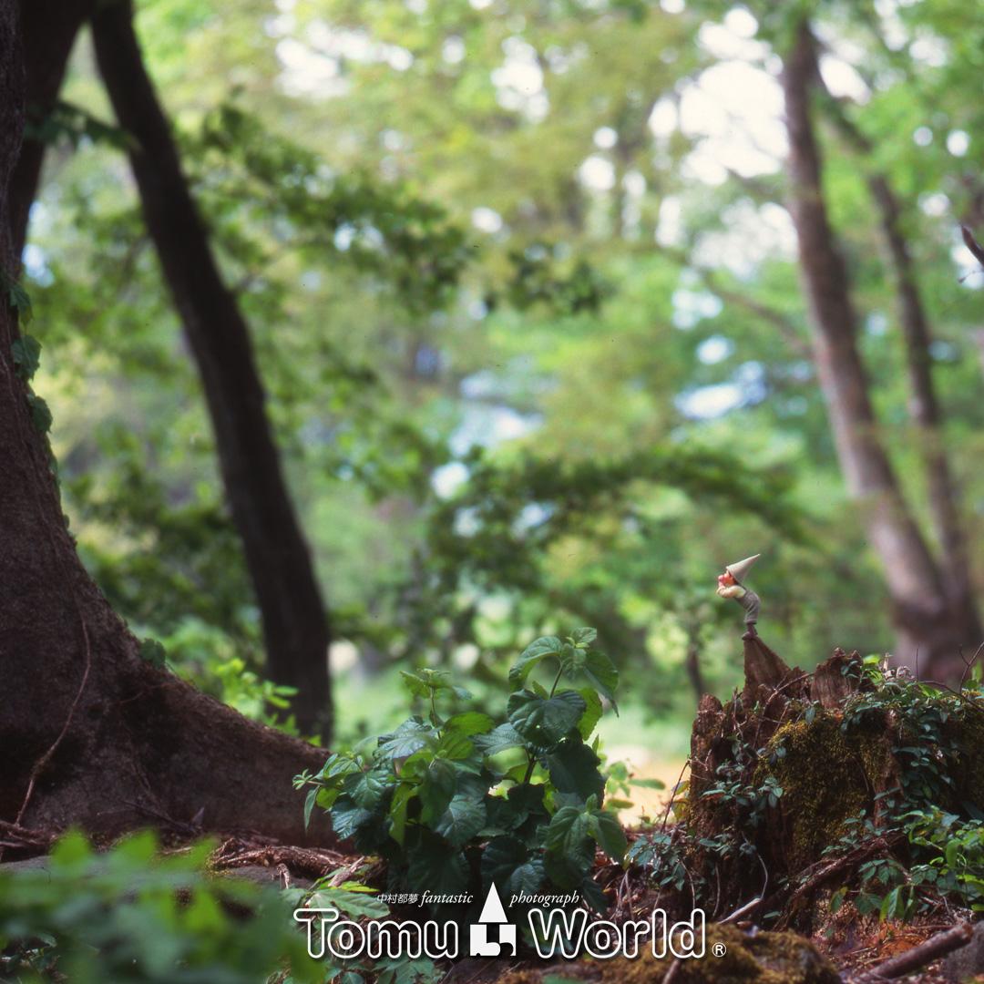 深淵の森に向かって問いかける小人