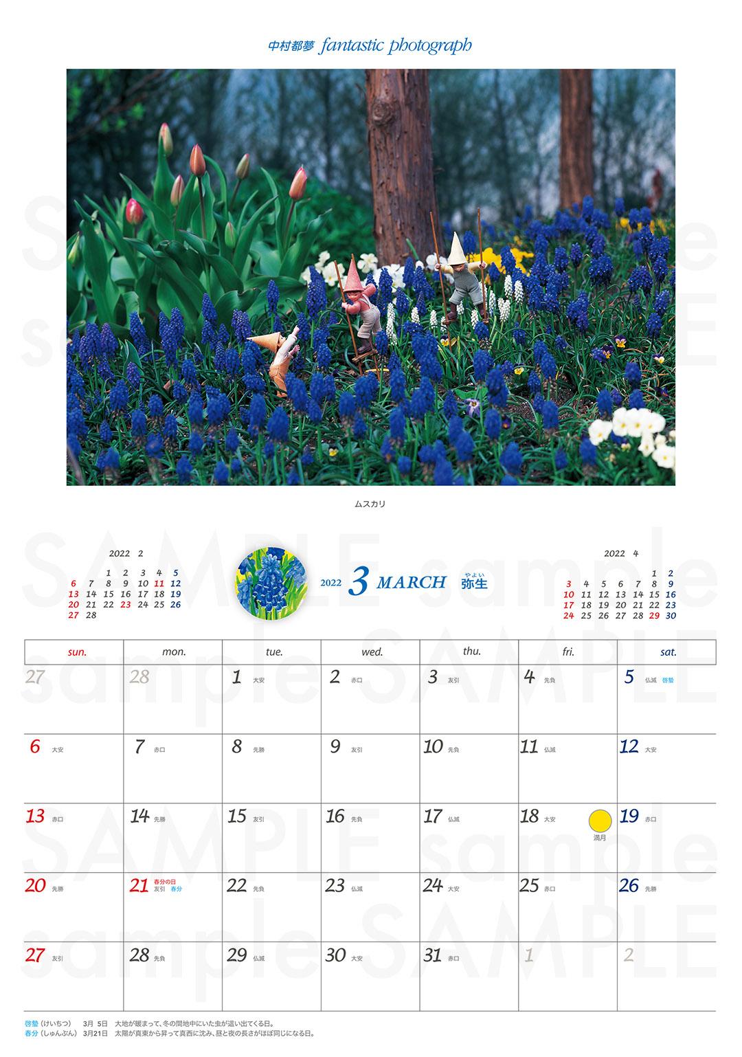 3月:ムスカリ